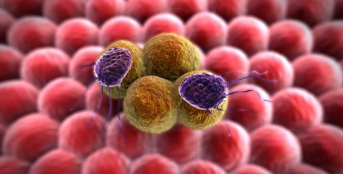 pourquoi nos cellules s 39 orientent elles vers le cancer. Black Bedroom Furniture Sets. Home Design Ideas