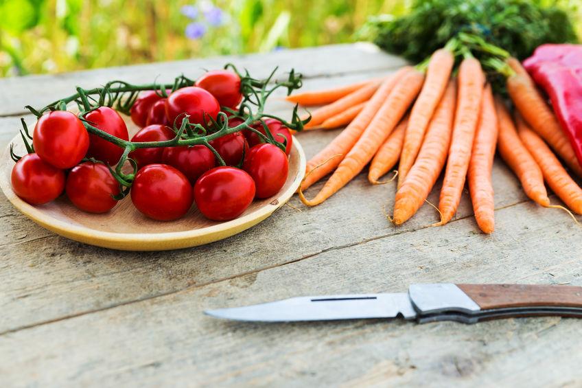 agriculture bio écologie